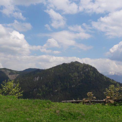 Lip. hrad 002