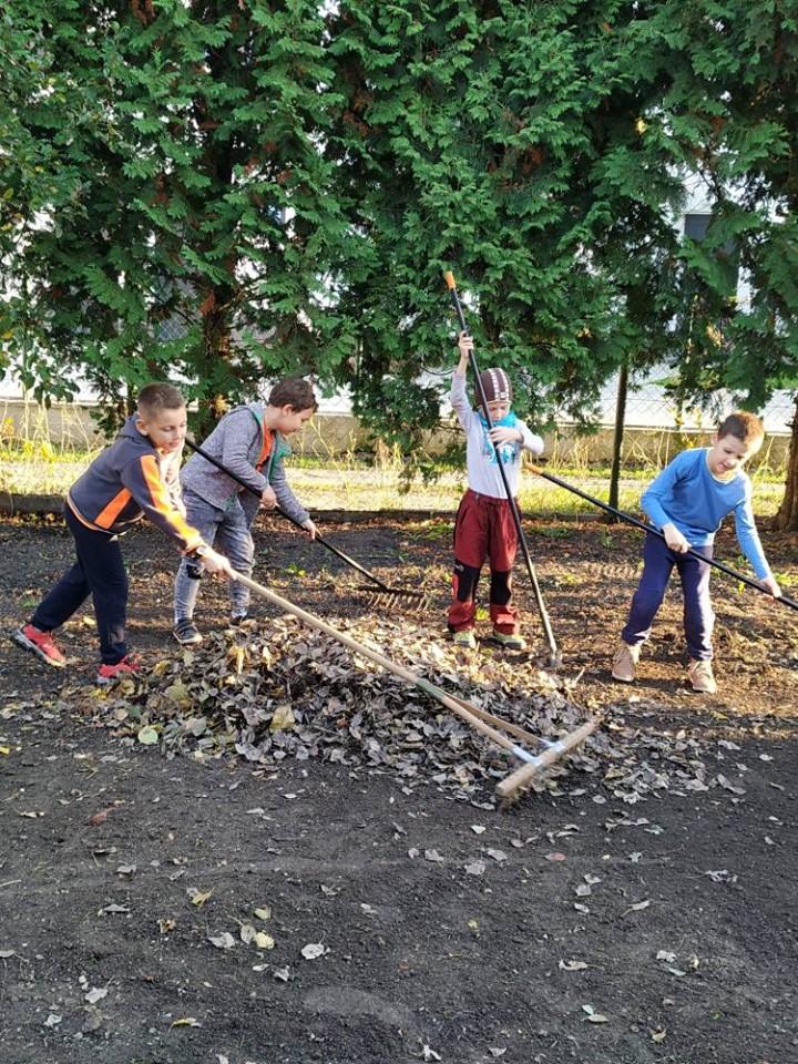 Vlčatá hrabali, zbierali listy či čistili okolie bylinkovej záhradky.